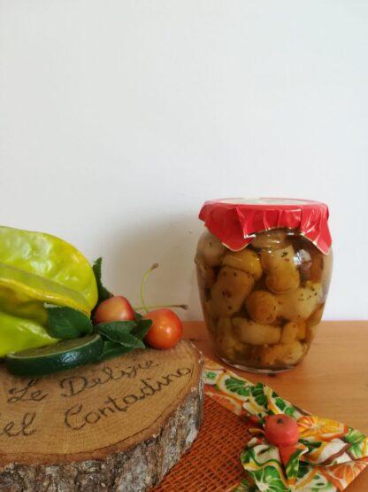 Funghi porcini sott'olio (2)
